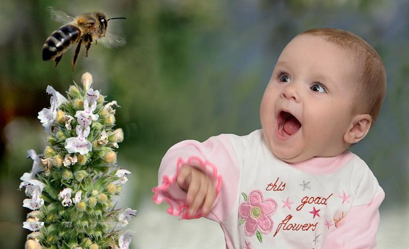 Укус пчелы в голову, шею, руку