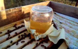Разновидности кормушек для пчёл, рекомендации опытных пчеловодов