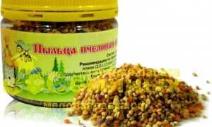 Принимаем пчелиную пыльцу в правильных дозировках