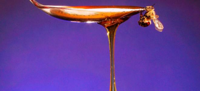 Какая калорийность меда в чайной ложке: полезные свойства мёда