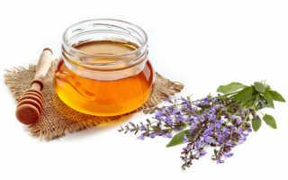 Шалфейный мед и все его особенности