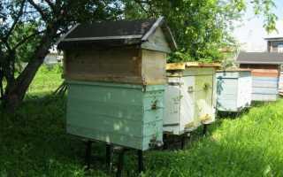 Пчелиный домик: сделать своими руками