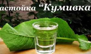 Значение настойки хрена на спирту: от каких болезней