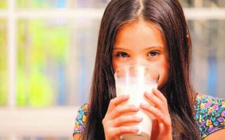 Молоко с медом от кашля: рецепты и полезные рекомендации