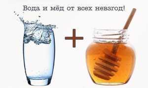 Советы, как принимать правильно мед
