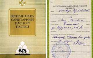 Порядок получения паспорта на пасеку