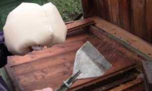 Рецепты канди для подкормки и лечения пчел