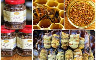 Польза и вред пчелиной перги
