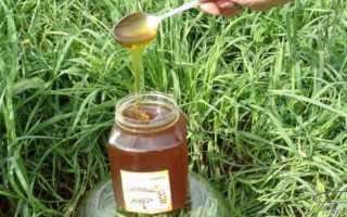 Дягилевый мед – средство от простуды с изысканным вкусом