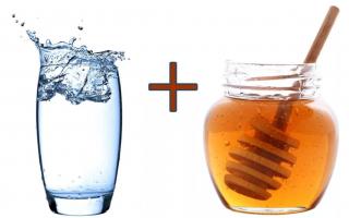 Теплая медовая вода натощак: польза или вред