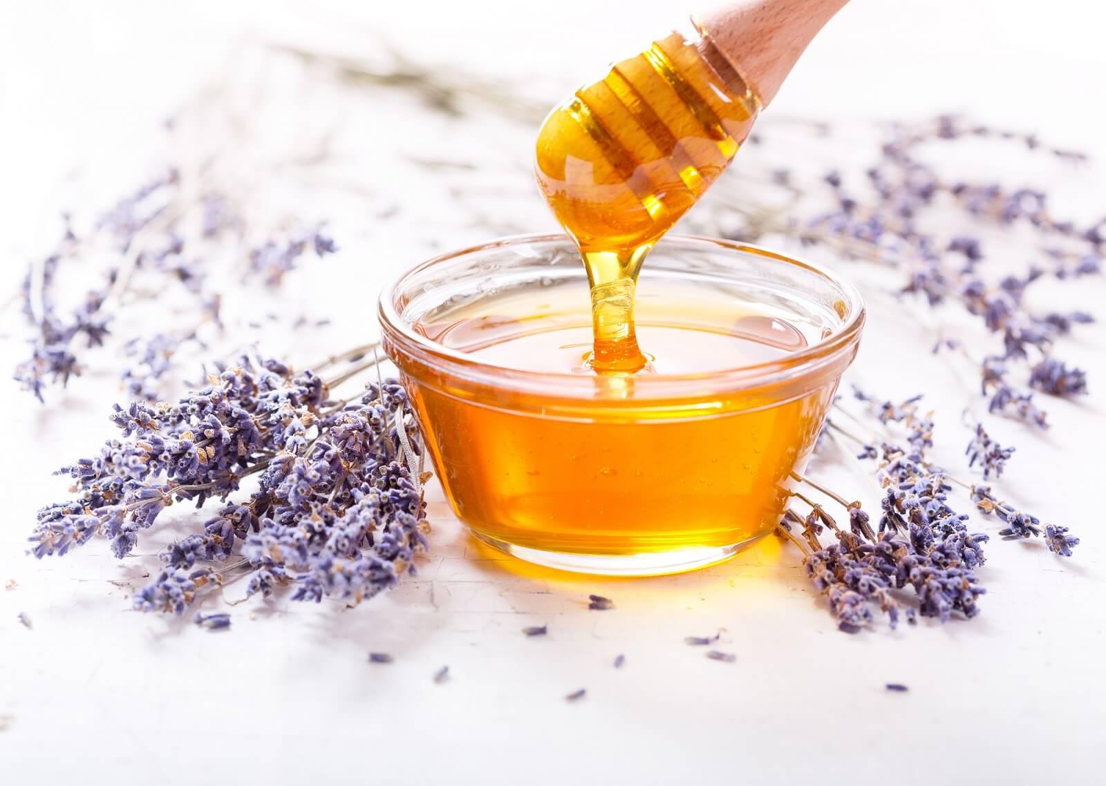 Как начать бизнес по пчеловодству
